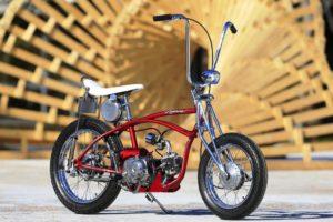 SUPER ΠΑΠΙ: Ένα παπί που αγαπούσε τα ποδήλατα